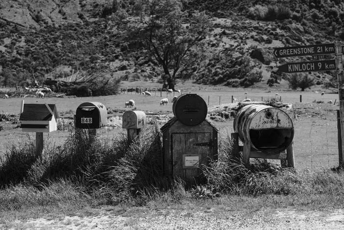 Black and white photo of 5 letterboxes in rural Australia